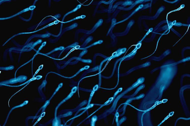 Sederhana, Cara Tingkatkan Kualitas Sperma Bagi Pria!